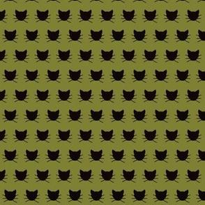 Tiny Black cat on olive green