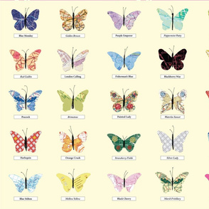 Butterfly_Collection_FQs