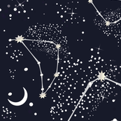 Zodiac Constellations - Capricorn