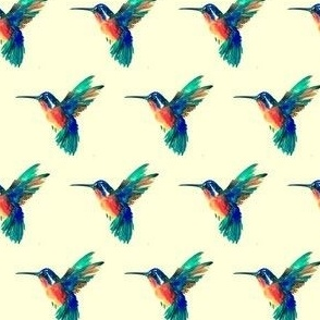 Rainbow Hummingbirds