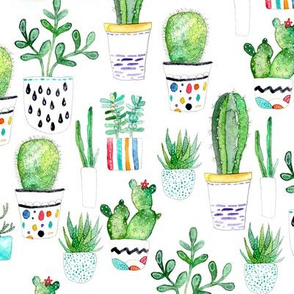 Watercolour Succulents
