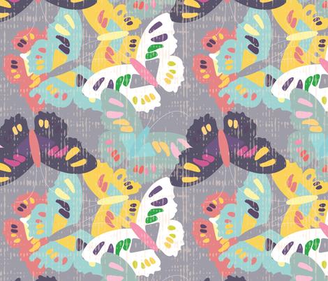 Butterflies-2015