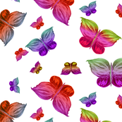 BUTTERFLIES EXOTIC JUNGLE ORCHID FLOWERS XL