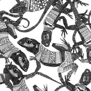 just lizards black white
