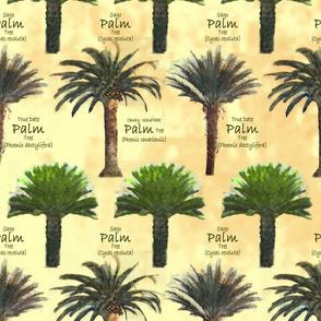 palms_sketch