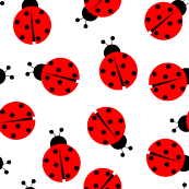 Cute Summer Lady  Bug Pattern