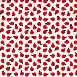 Cute Summer Lady  Bug Pattern