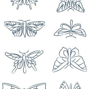 Flutterfly Sketches