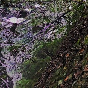 treepaint543