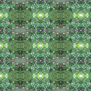 Pixie Pathways in the Green Realm (Ref. 0385)