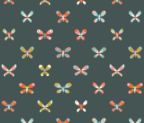 butterflies coordinates