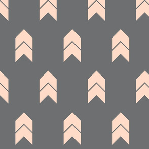 blush and grey chevron