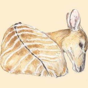 Nyala Antelope, Watercolor