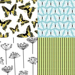 Swallowtail Coordinates