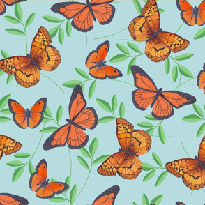Joy's butterflies collection