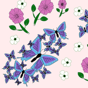Blue and Purple Butterflies on pink