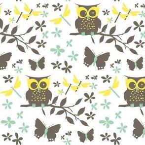 Thriving owl 2015 boys