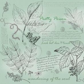 Pretty Poison Sketch