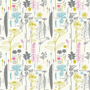 Rwild-welsh-botanicals1_shop_thumb