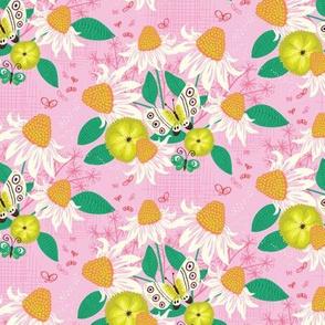 Summer Butterflies - echinacea