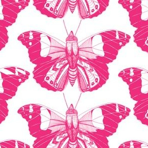 Candyfloss Flutterings