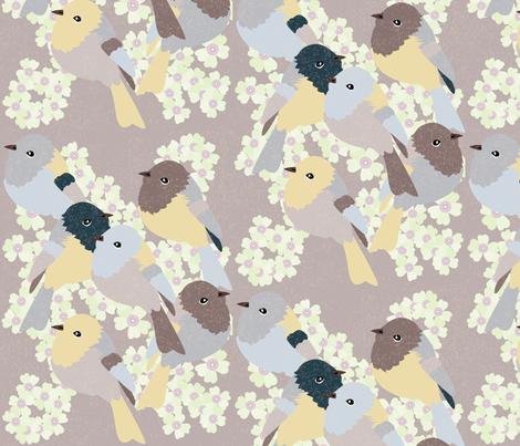 Little Birds - 3