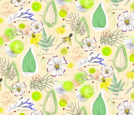 Botanical Summer Sketchbook