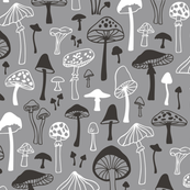 Mushrooms in Gray