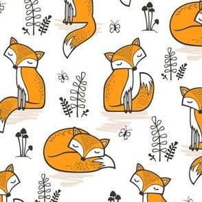 Dreamy Fox in Orange
