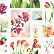 botanical_watercolor_sketchbooks