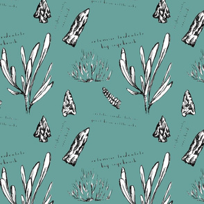 Owyhee Count Field Journal Fabric in Teal