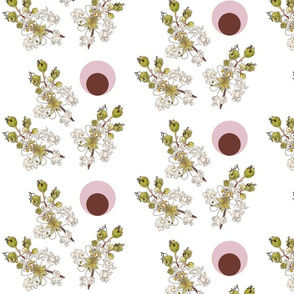 Crepe Myrtle Pink Circle
