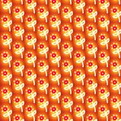 Orange Glow Flowers
