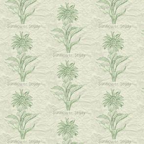 Sunflower Green Paper