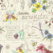 botanical_sketchbook-01