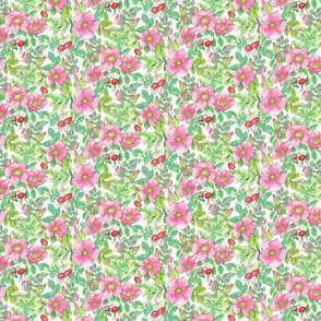 Beach Rose allover pattern-white