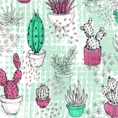 Rrcactus-sketchbook_shop_thumb