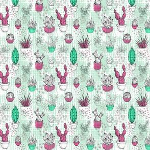 My Cactus Sketchbook