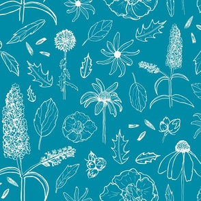Backyard Botanicals in Teal