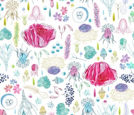 Rbotanical_sketchbook_danadesignillustration_contest107300preview