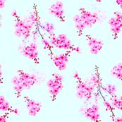 Cherry Blossom Branches-sky blue