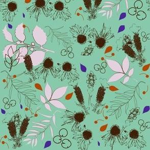 Botanical Echinacea purpurea_Lavender