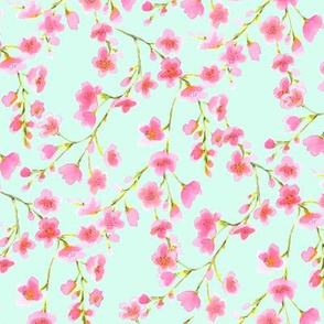 Cherry Blossom Pink and Mint