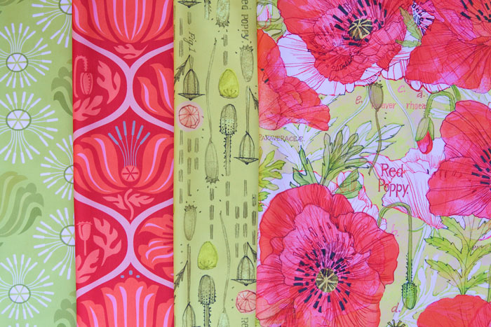 Rrcalifornia_poppies_botanical_sketchbook_contest_preview_cf
