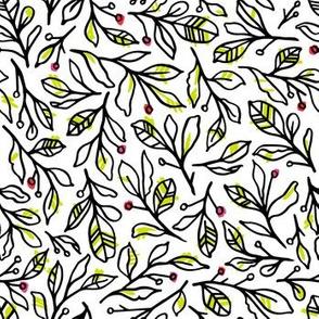 Botanical Sketches