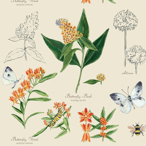ANNE_HAMMES_FABRIC_8_BOTANICAL_SKETCHBOOK_8_2015-01
