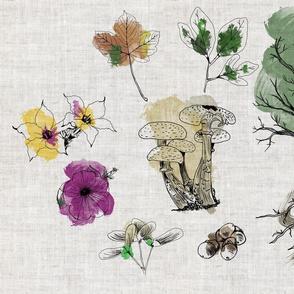 Botanical Sketchbook in Watercolor on Linen