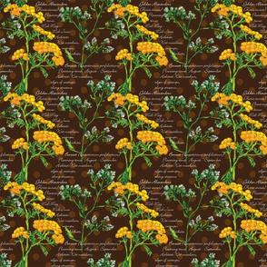 Weikert_Botanical-2