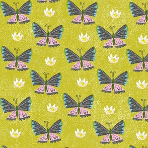 butterflies are migrating