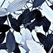 cacao indigo blue